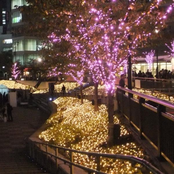 【600600】目黒川みんなのイルミネーション2012 点灯式会場そば
