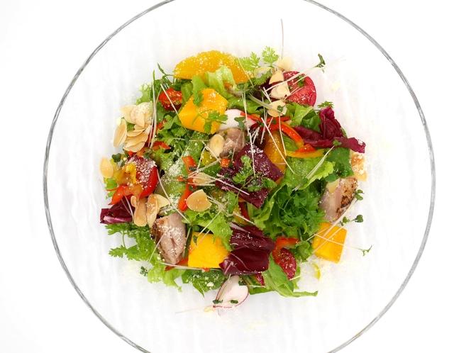 色々野菜のサラダ