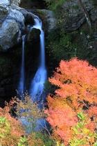 紅葉新名所・姫の滝