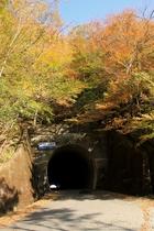 紅葉の雲早トンネル
