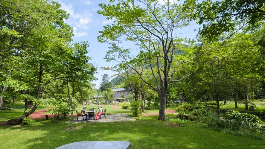 庭園でピクニック