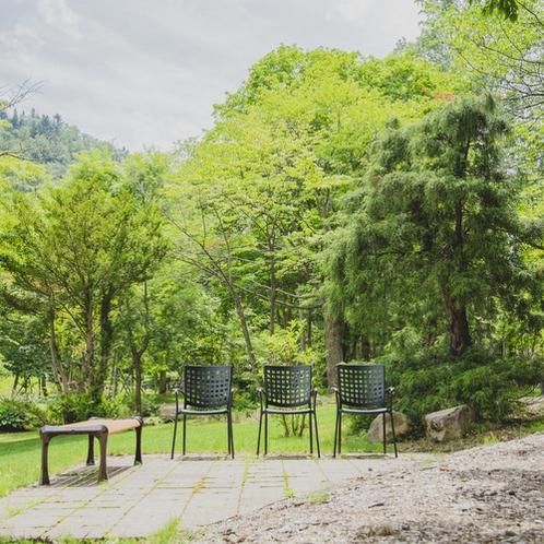 【庭園】夏 お散歩の足を止めてリラックス