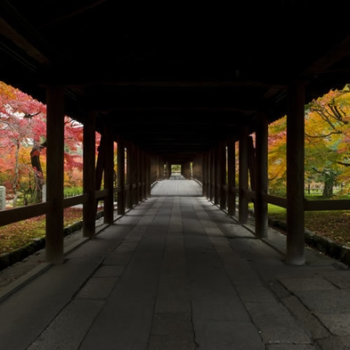【期間限定】秋の東福寺ライトアップ☆夜間拝観クーポン付きプラン♪【朝食付】