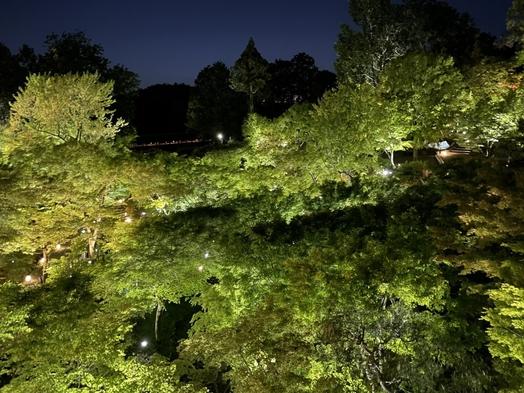 東福寺の青もみじライトアップ☆夜間拝観クーポン付きプラン♪【朝食付】