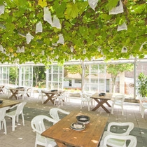 【焼肉レストラン葡萄の木の下で】