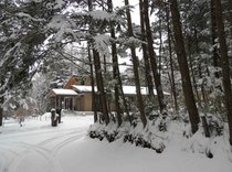 施設 エントランス冬景色16