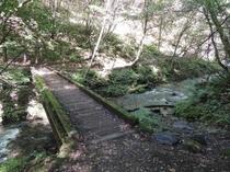 観光 竜返しの滝4