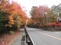 近隣 紅葉景色12