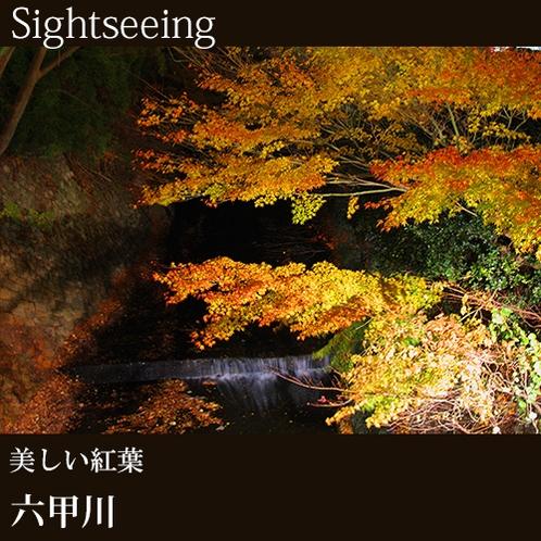 ▲[六甲川]美しい紅葉
