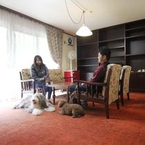 客室一例。どのお部屋もペットと一緒に泊まれるゆったり和洋室です。プライベートなひと時を。