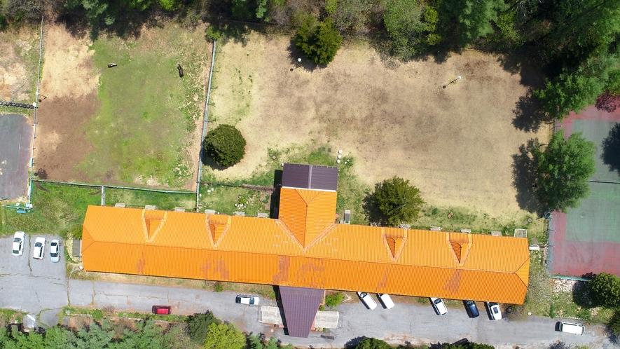 当館自慢、約1500坪の天然芝ドッグラン!