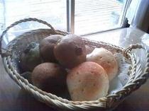 36.春の新作♪焼きたて「よもぎパン」積んだばかりのヨモギがいっぱい♪