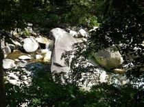 オットセイ岩