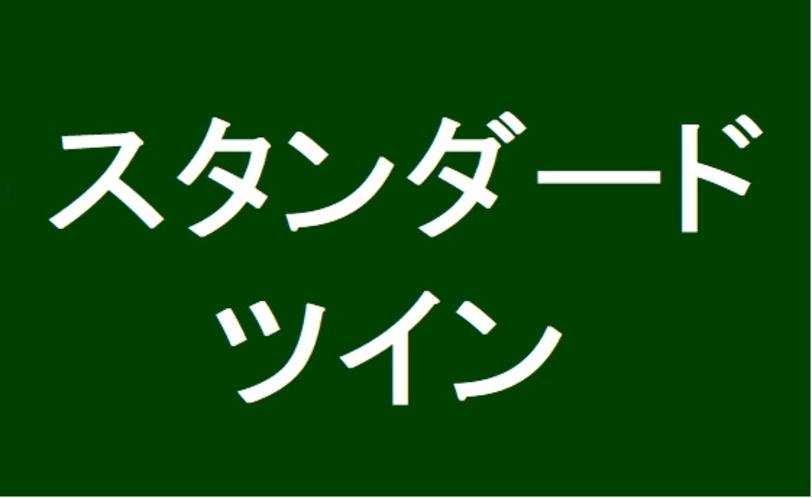 スタンダードツインロゴ