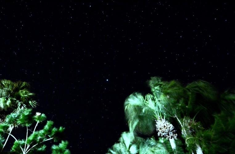 お庭からの星空