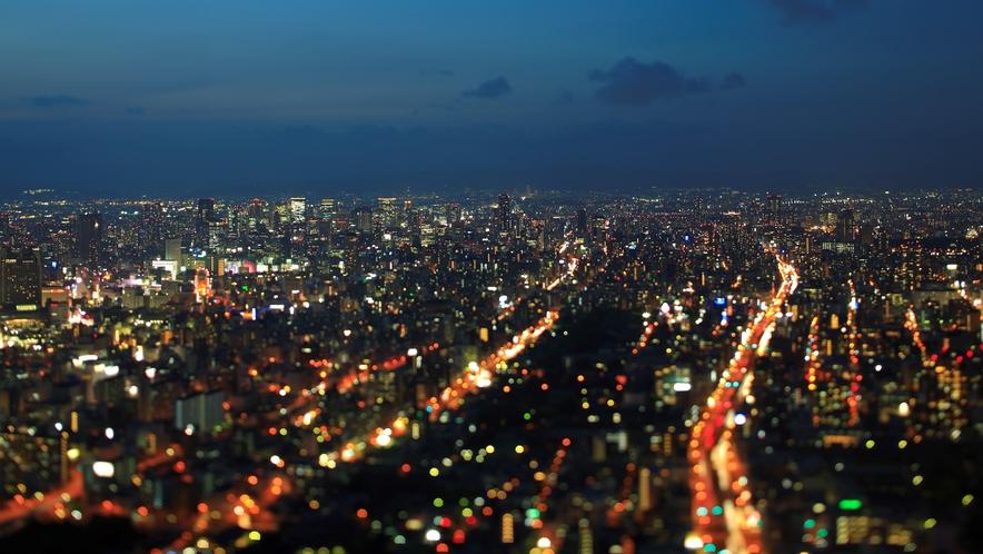 夜景 南側
