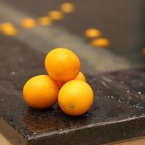 月替わりで季節の果物、ハーブのお風呂をお楽しみください