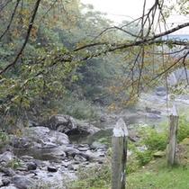 【周辺散策】渓流まで足を延ばせば、川のせせらぎにきっと心癒されるはず。雪解けの春もぜひ見てもらいたい