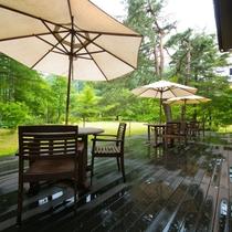 【オープンテラス】木漏れ日と森の風が心地良いテラスは、四季折々の自然を楽しめる最高のスポット