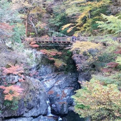みたらい渓谷吊り橋