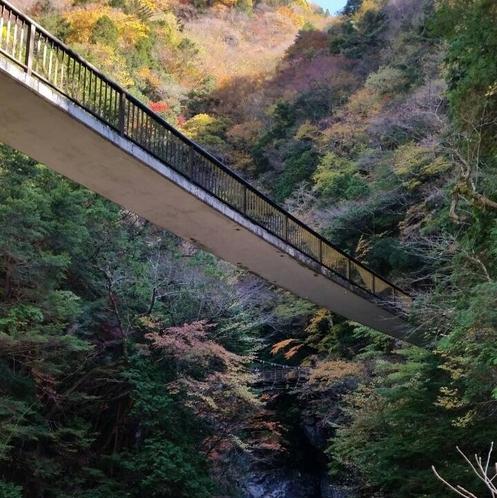 みたらい渓谷 吊り橋