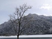 冬の金華山