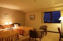 10・11階客室(ツインルーム)高層階からの眺望をお楽しみください。