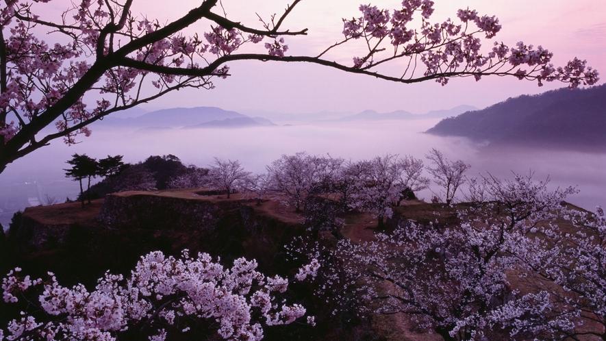 息を呑むほど美しい。春夏秋冬を愛でる贅沢。忙しい日常から解き放たれ至福のひとときをお過ごしいただけま
