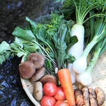 お野菜も季節ごとの新鮮なものを厳選しております。(一例)