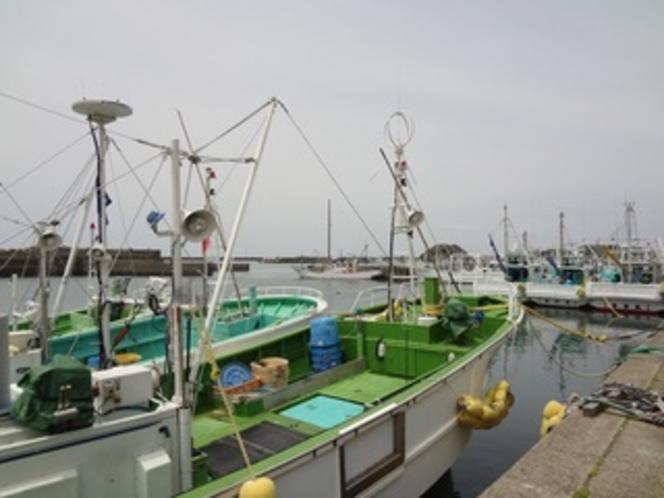イルカウォッチングの銚子の港