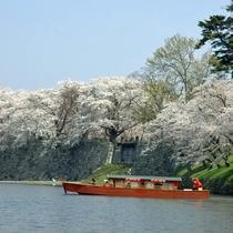 【春の景観】桜を眺める屋形船
