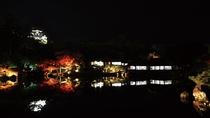 【秋の景観】美しい紅葉とライトアップ