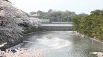【春の景観】お堀の桜筏
