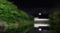 【彦根城】新緑に満ちた夜の国宝彦根城。