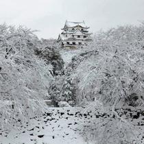 【冬の彦根城】雪化粧が美しい彦根城