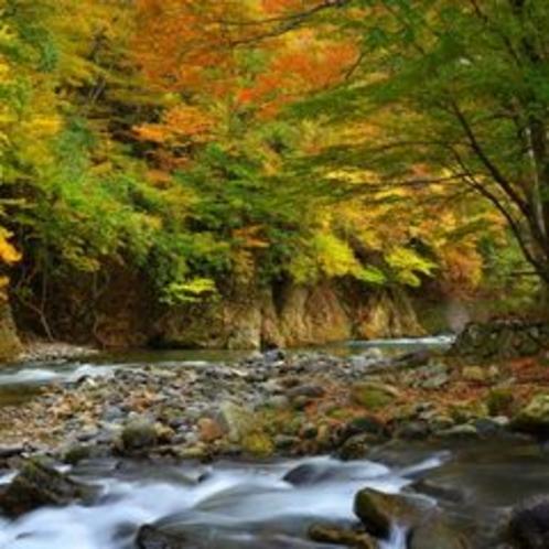 ■塩原の自然風景、紅葉渓流