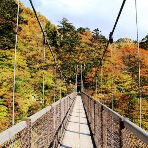 回顧の吊橋 紅葉
