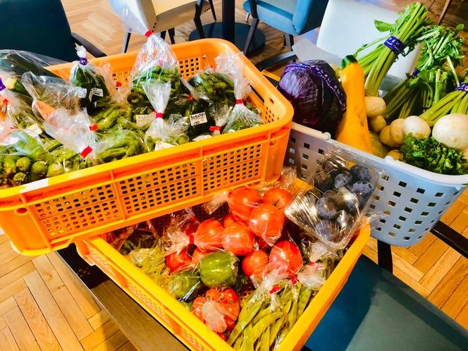 産地直送の道産野菜