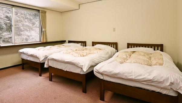 禁煙【洋室トリプル】17.6平米 滝側部屋<ベッド3台>