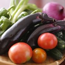 「 さだえ 」で使う野菜は、女将が育てる「 自家農園の野菜 」が中心です。