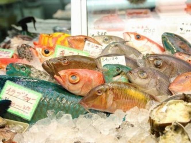 Okinawan fish