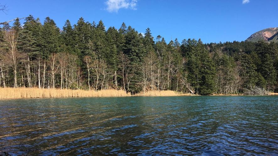 【周辺】澄んだオンネトー湖