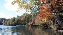 【周辺】ピークを迎えたオンネトー湖の紅葉