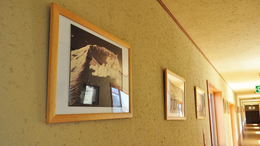 【館内】周辺では雄阿寒岳や阿寒富士を見ることができます。