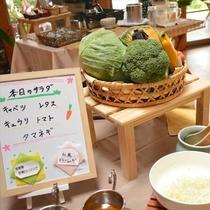 <朝食>産直のサラダ