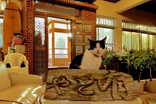 沖縄で暮らすように料理も出来てニャンコと戯れゆっくり出来る、沖縄通の素泊りプラン♪