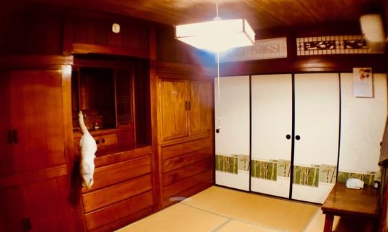 昔ながらの6畳和室です