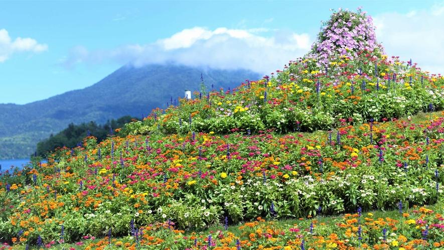 【阿寒イオマプの庭】ドレスガーデンには色とりどりの花が咲き誇ります(イメージ)