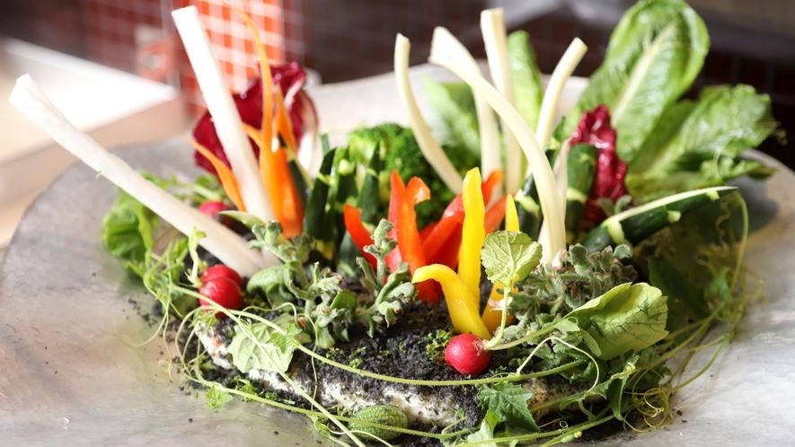 【ビュッフェレストラン「HAPO」】素材本来の旬の味を生かしたビュッフェ(イメージ)