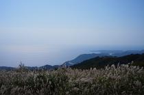 上から眺める海岸